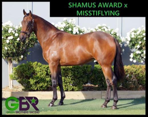 Shamus Award X Misstiflying