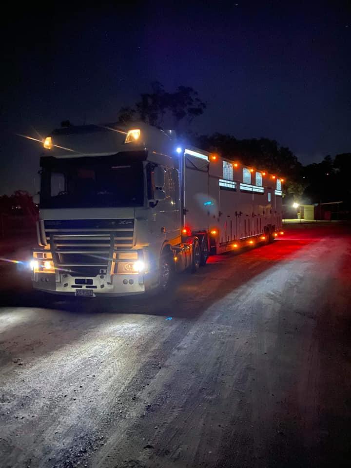 Prestige Horse Transport