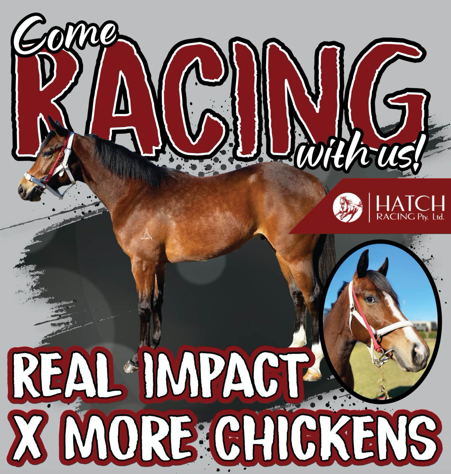 Real Impact X More Chickens