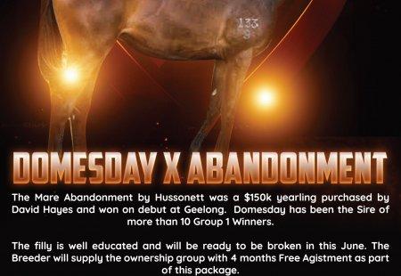 Domesday X Abandonment