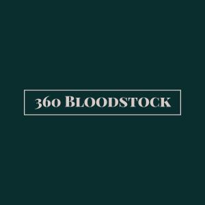 360 Bloodstock