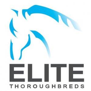 Elite Thoroughbreds