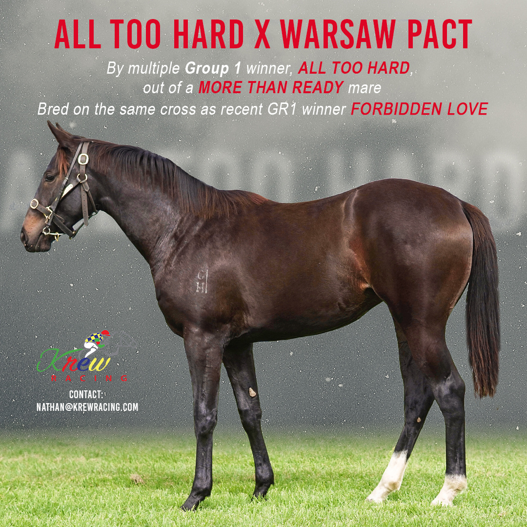 All Too Hard X Warsaw Pact