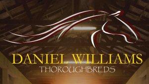 Daniel Williams Thoroughbreds