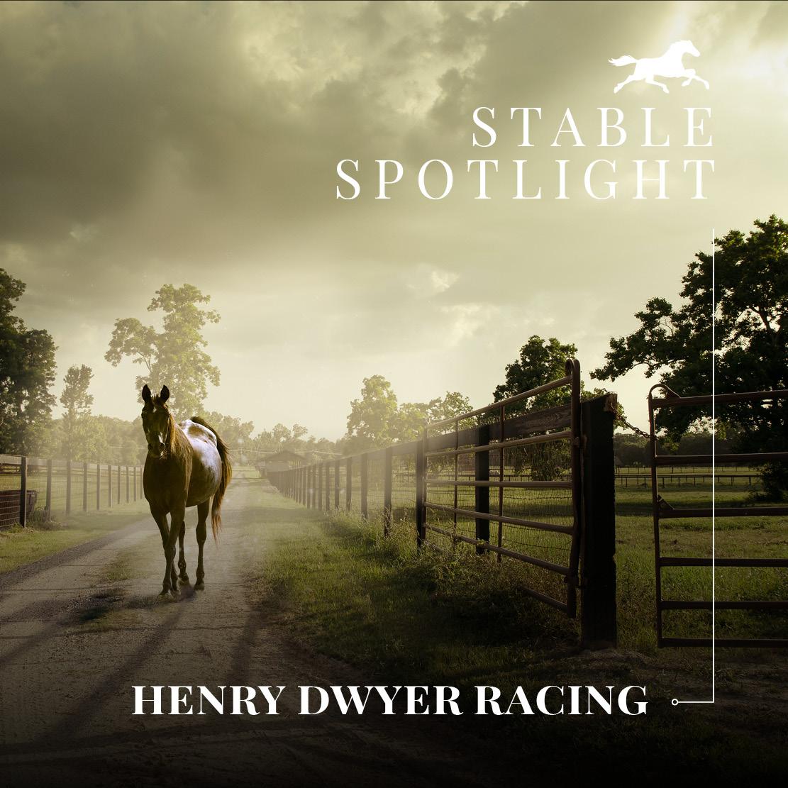 Stable Spotlight – Henry Dwyer Racing