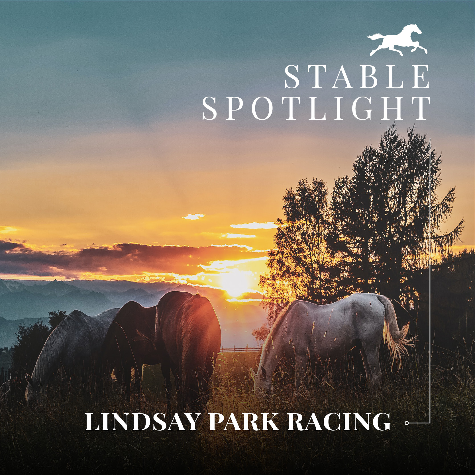 Stable Spotlight – Lindsay Park Racing