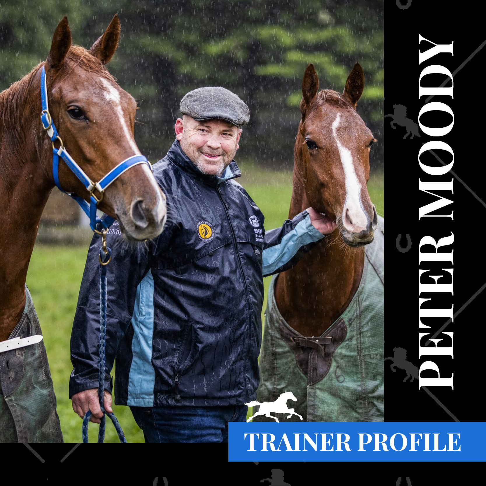 Trainer Profile – Peter Moody